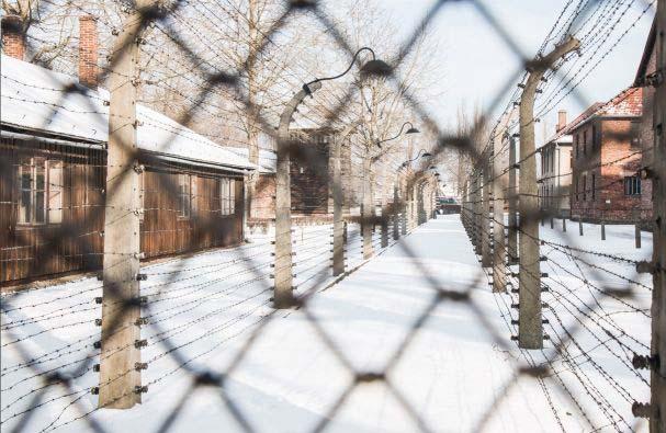 Auschwitz krakow